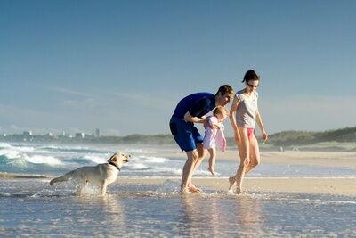 Case Vacanze per cani